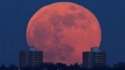 Tertulis Di Kitab Wahyu, Benarkah Gerhana Bulan Baru-baru Ini Pertanda Akhir Zaman?