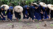 Mulai Dari Liburan, Hingga 3 Gadis Baduy Yang Mati Terbunuh Diperkosa. Ngeri!