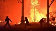 Makan Korban Jiwa dan Hanguskan Ratusan Rumah,Ternyata Ini Penyebab Kebakaran di Australia