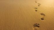 Hidup Cuma Sekali, Nikmatin Aja….