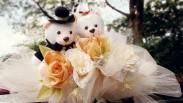 Tips Mempersiapkan Pemberkatan Nikah