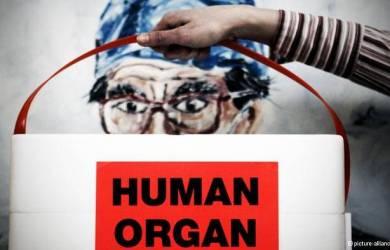 Penjualan Organ Tubuh Ilegal Marak di Facebook