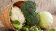 Paus Fransiskus Gemar Konsumsi Brokoli dan kembang kol, Lho.  Ulik Manfaatnya, Yuk