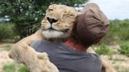 Pria Ini Menolong Dua Anak Singa, Akibatnya Diluar Dugaan, Ini Loh Pelajaran Pentingnya