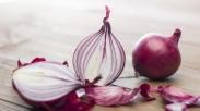 Sering Cuma Dianggap Sebagai Bumbu, Bawang Merah Punya 5 Keuntungan Ini, Lho