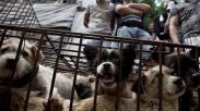 Dikenal Jadi Daerah Yang Konsumsi Beragam Hewan, Gereja Komitmen Lestarikan Satwa Liar