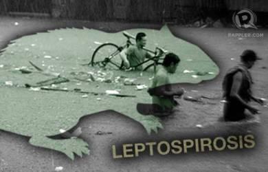 Banjir Melanda, Hewan Sekitar Berpotensi Tularkan Penyakit