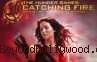 The Hunger Games:Catching Fire, Ketika Keberhasilan Menyulut Api Permusuhan