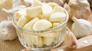 Wow, Dari Dapur, Kita Bisa Ketemu Dengan 4 Antibiotik Alami Ini