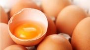 Nggak Cuma Alkohol, Apa Saja Bisa Jadi Penyakit Jika Di Makan Berlebihan. Misalnya Telur!