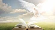 17 Peran Penting Roh Kudus Dalam Hidup Orang Percaya