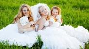 Apakah Menikah adalah Prioritas Anda? Baca Ini (2)