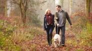 Tiru Lima Cara Ini Ketika Pasangan Hidup Anda Merasa Sedih