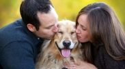 9 Pelajaran Penting dari Binatang Peliharaan Untuk Bahagiakan Pasangan