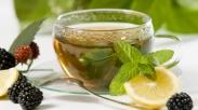 5 Tanaman Herbal yang Mampu Menjaga Tubuh Tetap Fit Selama Musim Hujan
