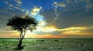 Ketika Matahari Tak Lagi Bersinar