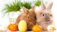 Kenapa Ya Setiap Perayaan Paskah, 5 Ornamen Ini Pasti Bakal Selalu Ada?