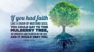 Punya Iman Sebiji Sesawi? Kamu Bisa Loh Pindahkan Gunung dan Pohon Ara