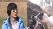 Tolak Kerjaan Bagus, Gadis Millenial Ini Malah Sukses Beternak Babi di Kampung