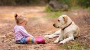 Percaya Gak Percaya, Terapi Anjing Ampuh Loh Bantu Anak Belajar Bicara!