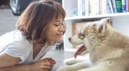 Bukan Cuma Jadi Sahabat, Anjing Juga Bisa Deteksi Kondisi Kesehatan Pada Manusia Loh!