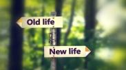 Resign Demi Temukan Tantangan Baru, Begini 5 Cara Biar Lewati Transisi Lebih Mudah