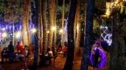 Sambut Kelahiran Yesus, Hutan Pinus Ini Didesain Jadi Kampung Natal Penuh Cahaya