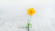 10 Ayat Alkitab yang Ajarkan Kita Gak Putus Berharap dan Bermimpi di Masa-masa Ini