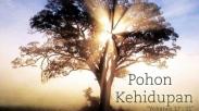 3 Jenis Pohon di Taman Eden