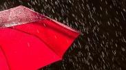 5 Bisnis yang 'Cerah' di Musim Hujan