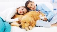 5 Manfaat Mempunyai Hewan Peliharaan Bagi Anak