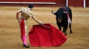 Kain Merah dan Matador