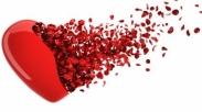 Mencintai Meski Terluka