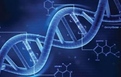 DNA Ilahi