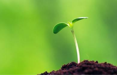 Semua Pertumbuhan Butuh Proses, Yesus Sendiri Mengalaminya!