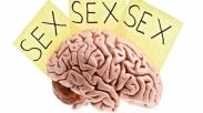 Seks Membuat Anda Lebih Pintar & Awet Muda