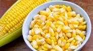 Takut Makan Jagung Karena Karbonya? Ternyata Banyak Untungnya Loh Untuk Kesehatan Kamu