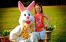 Salah Didik, Anak-anak Inggris Pikir Paskah adalah Ultah Kelinci