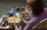 Penelitian: Junk Food Bikin Suasana Hati Makin Buruk