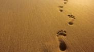 Setiap Langkah Adalah Anugerah